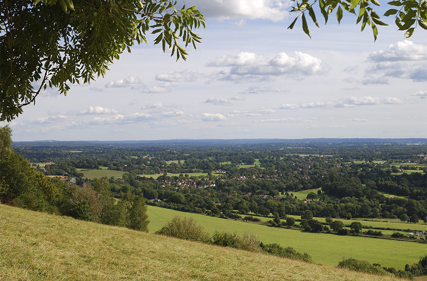 Gaze for miles across the Surrey countryside from the top of Box Hill