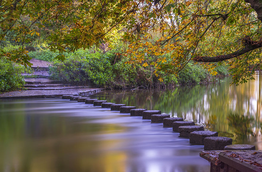 Hop across the Stepping Stones at Box Hill