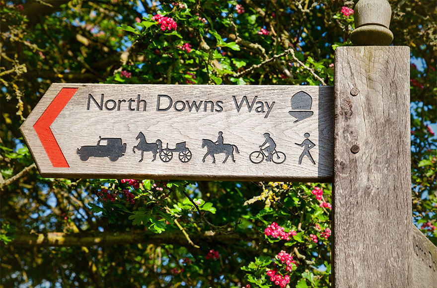 There are great walks across open farmland and the North Downs circular walk