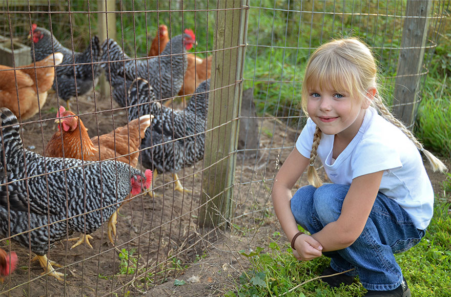 Priory Farm at Nutfield is great for kids