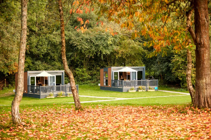 Two of three homely glamping pods, nestled in this secluded spot in Surrey