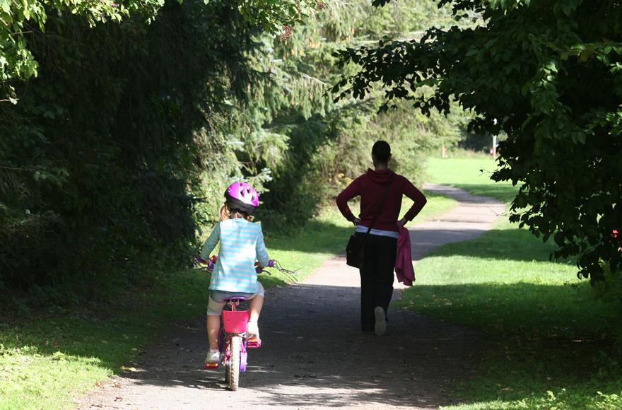 Walking trails near Forfar Lochside