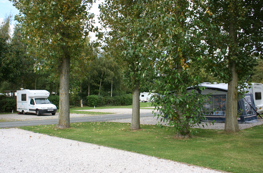 Lush trees at Chester Fairoaks campsite