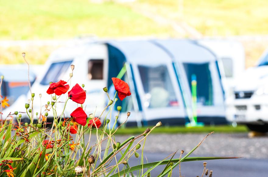 Camping at Stonehaven