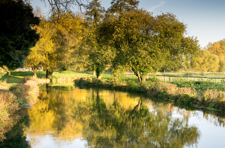 The tranquil waters of the River Itchen in Winchester
