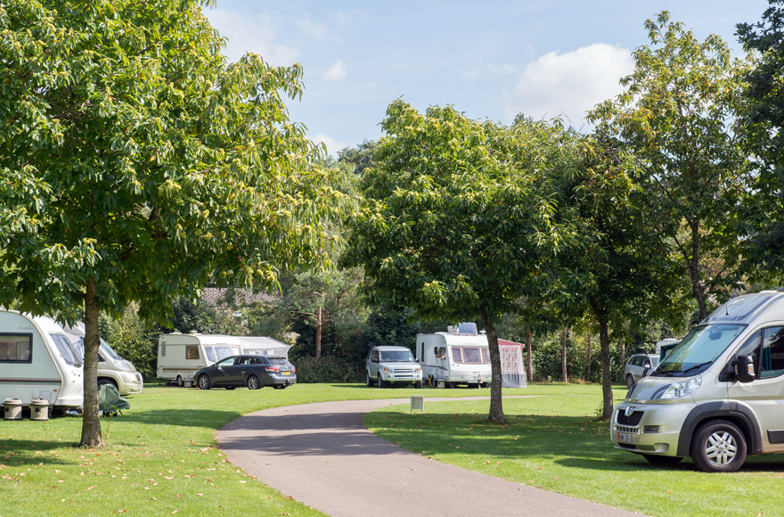 Pitches shaded by trees on Burford site