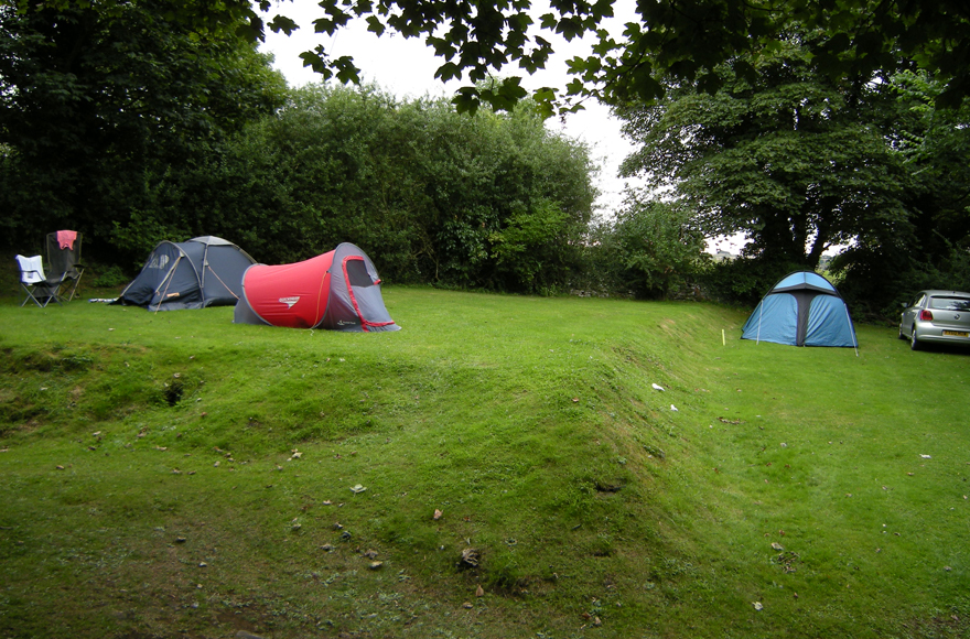 Enjoy this peaceful, green site at Lower Wensleydale