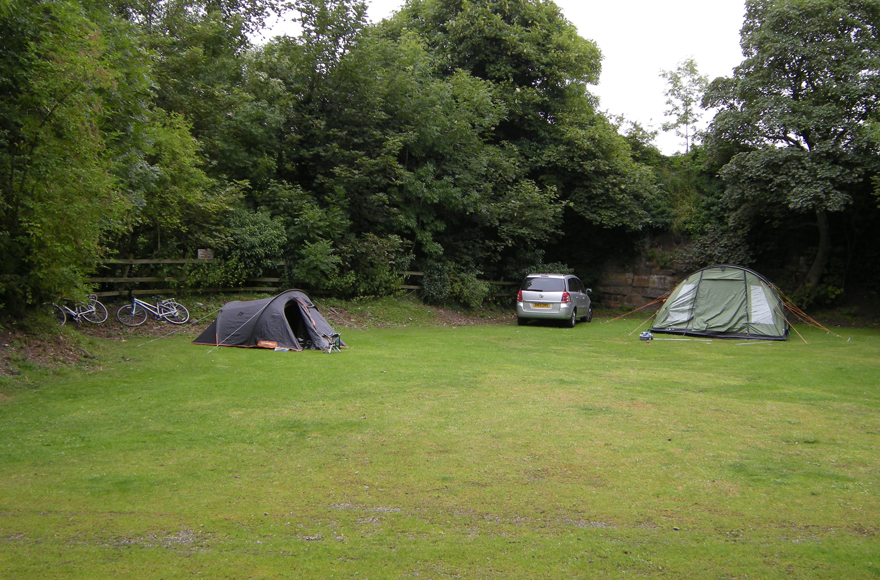 Nature at its best on our Lower Wensleydale campsite