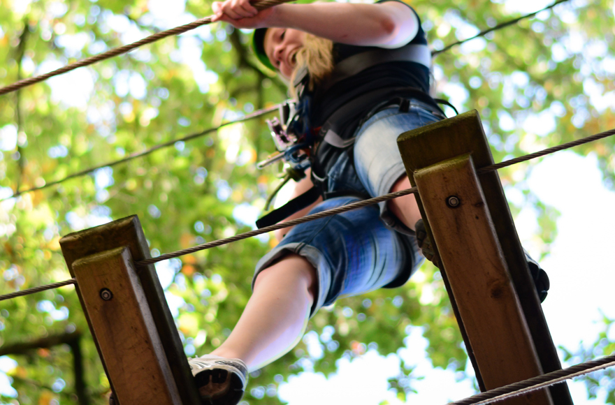 Experience a tree top adventure at Beamish Wild