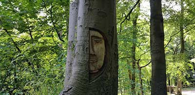 Face carved into tree