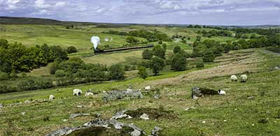 Grassy knolls of Goathland in Yorkshire, with trees and steam train in distance