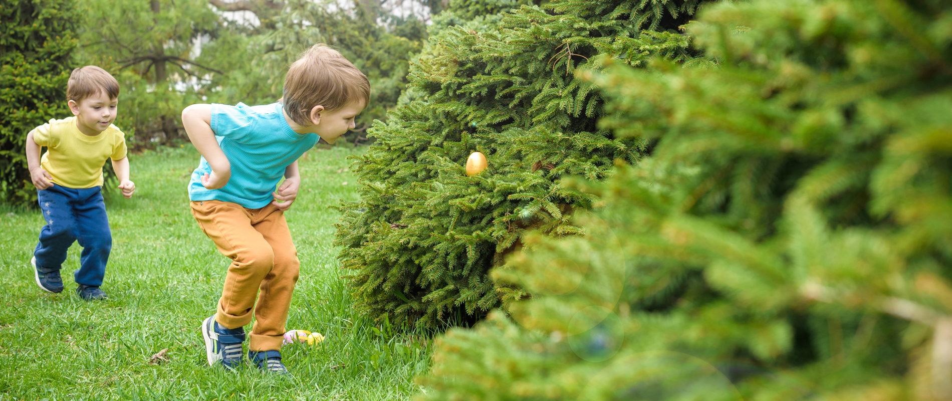 Young children hunting for Easter eggs