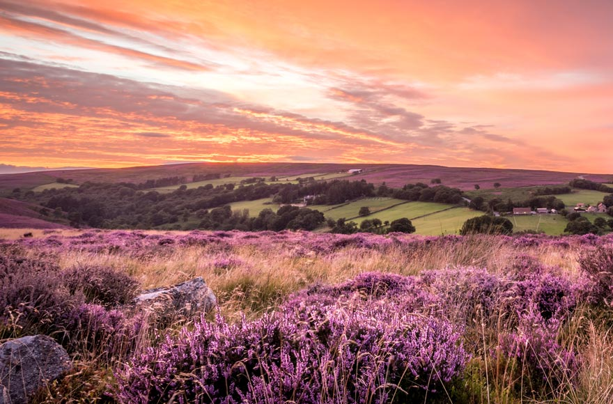 Beautiful sunset over the North Yorkshire Moors