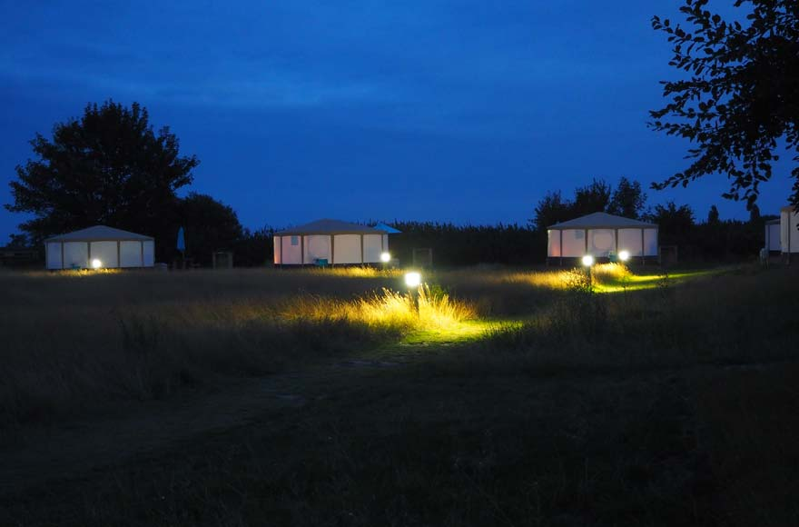 Four yurts at dusk illuminated by lights on the grassy pathway at Daleacres campsite