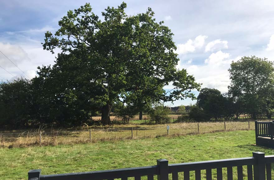 A room with a view - kick back and take in the countryside around you from your glamping pod