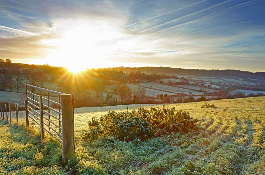 Frosty field and open gate in the Cotswolds