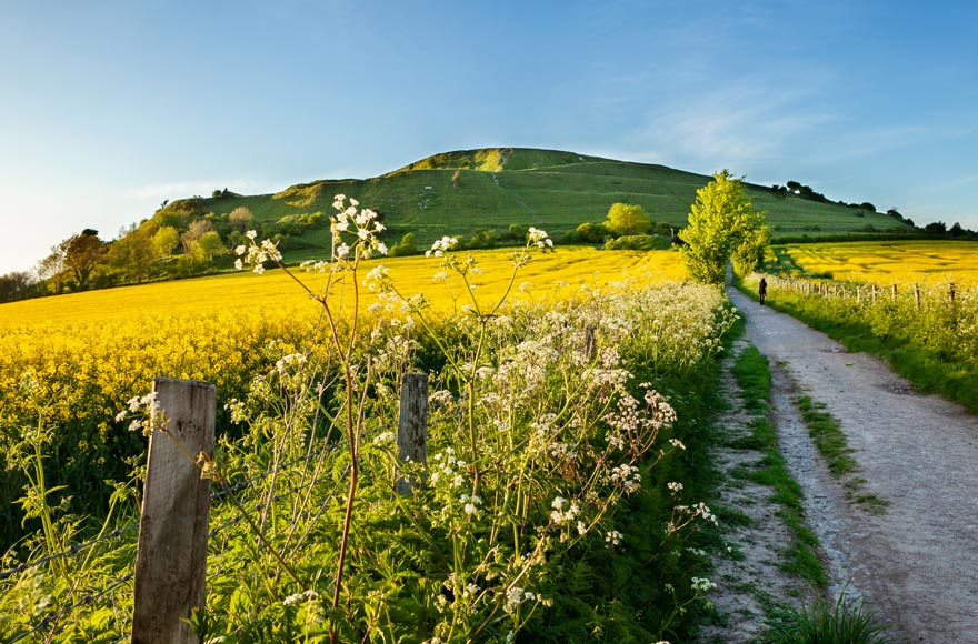 Enjoy the view of Cley Hill in Warminster