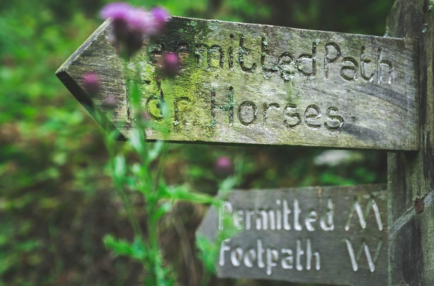 Explore Exmoor National Park by foot or on horseback