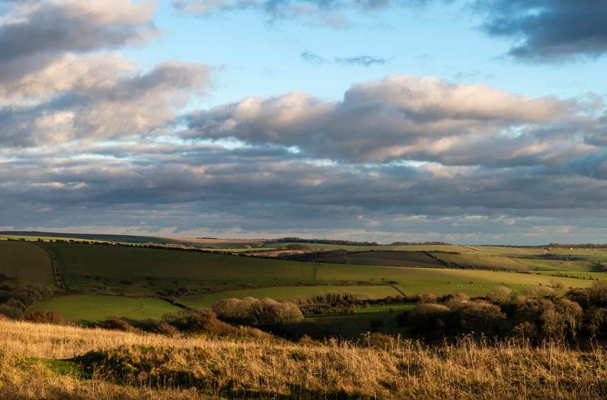 Rolling hills of South Downs National Park