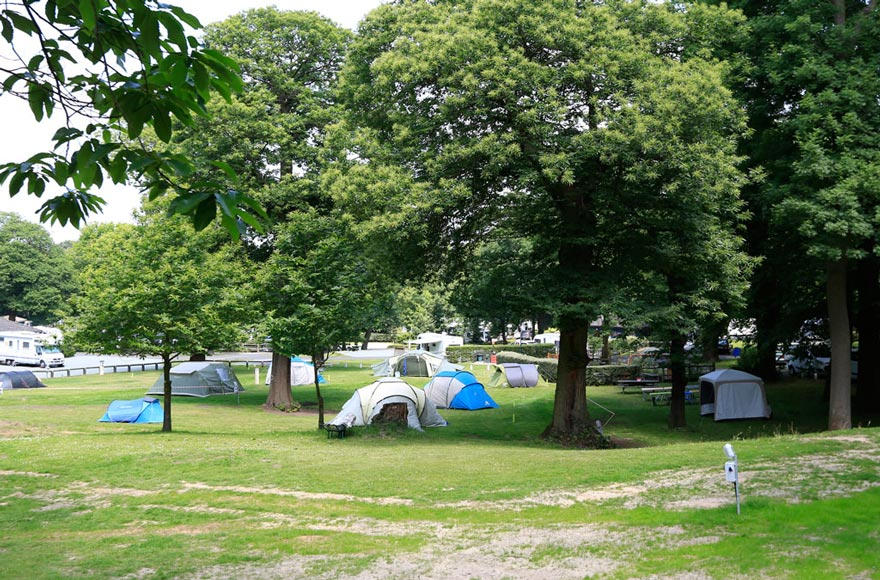 Pitch up at Abbey Wood in the leafy camping area